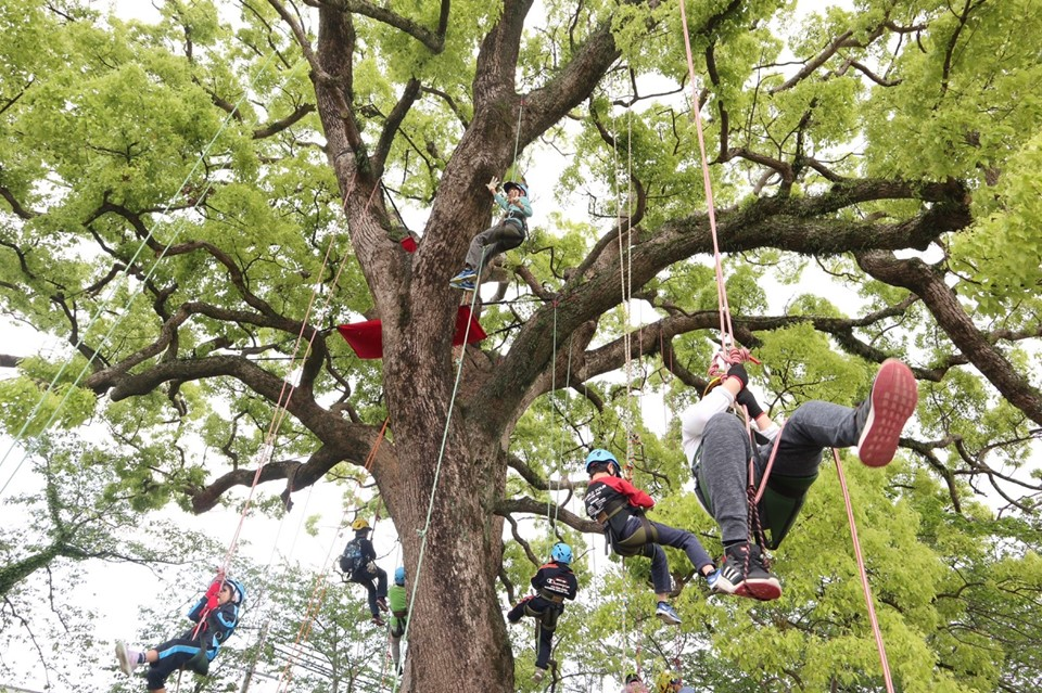 tree_climing_02