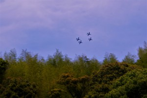 鬼岩寺では、ブルーインパルスが空に