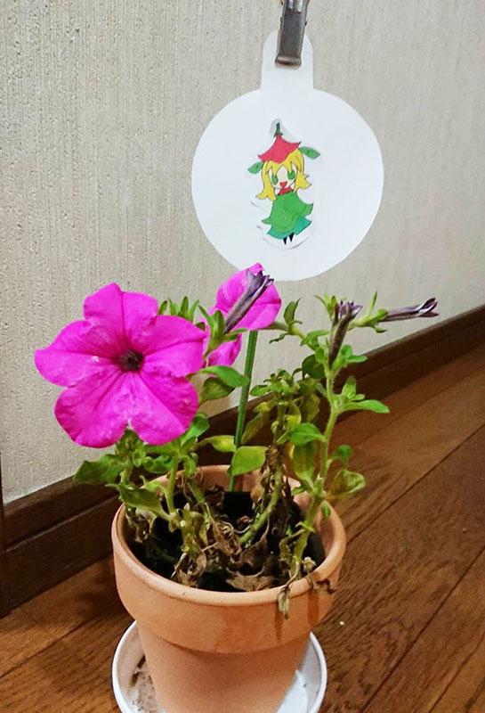 flower_label_new