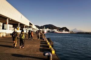 すっかり明け切った朝の港を、作業船まで移動します。
